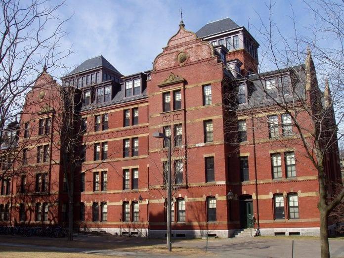Errores comunes a la hora de escoger un programa universitario en USA