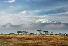 Beca para realizar un viaje cinematográfico a Tanzania