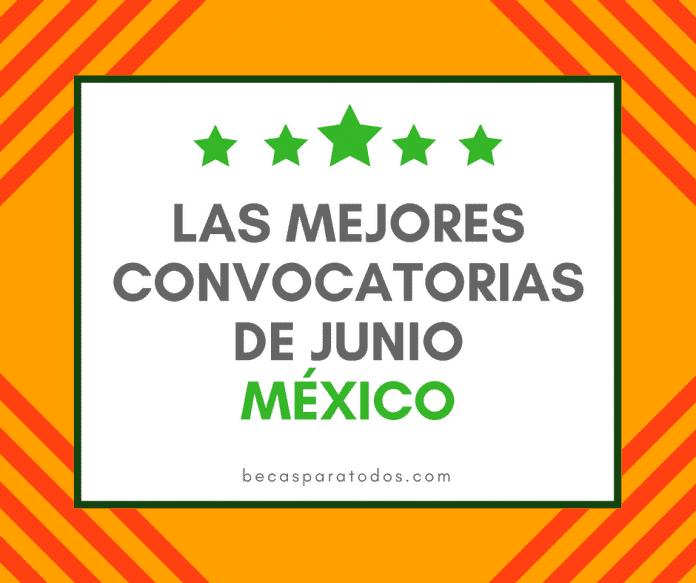 Convocatorias del mes para mexicanos: becas a las que puedes aplicar