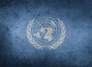 5 vacantes para trabajar en la ONU México, julio 2018.