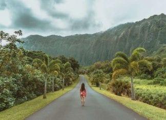 3 Opciones factibles para realizar un Voluntariado en Hawaii