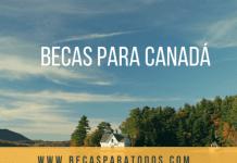 600 becas Amancio Ortega para españoles, estudia EEUU o Canadá