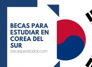 Becas universitarias Beauty International para estudiar en Corea del Sur