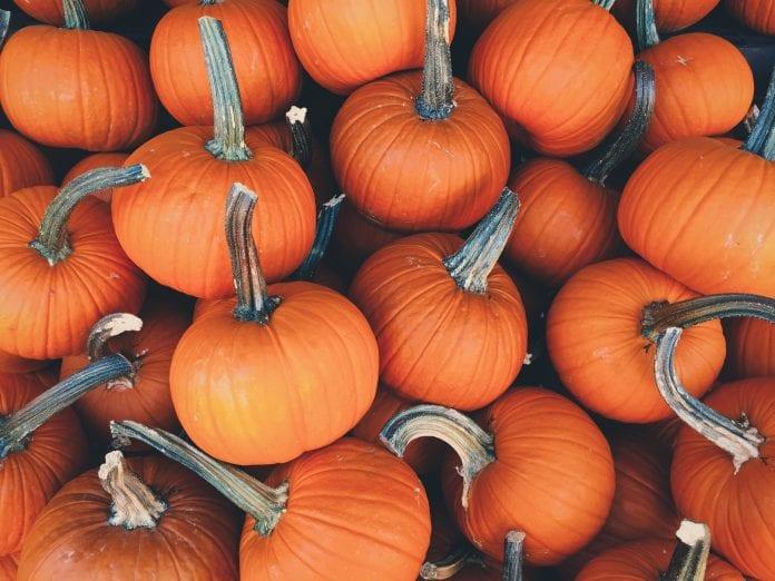 Cómo se celebra Halloween en U.S.A.