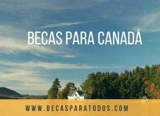 Becas Humber para cursar estudios de licenciatura, en Canadá.