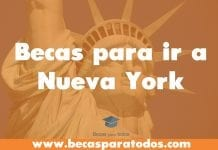 New york city University ofrece becas para periodismo narrativo, Premio Matthew Power