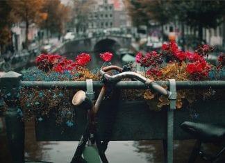 Becas para estudiar maestría en Holanda, Universidad Twente