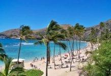 Becas para estudiar en Hawai