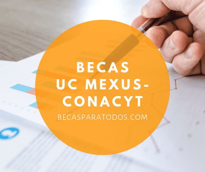 Fondos para proyectos de investigación, para equipos de mexicanos