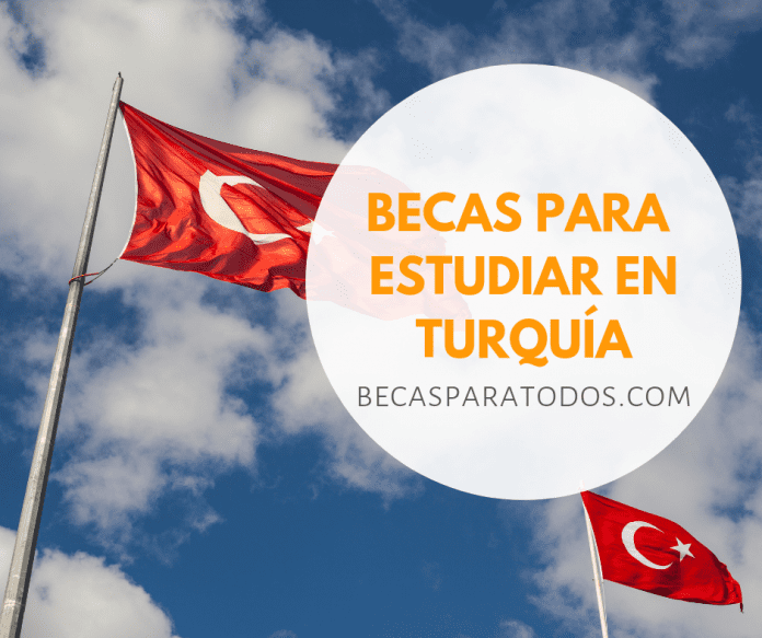 Becas universitarias del Gobierno de Turquía, idioma, grado y posgrado
