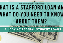What is a Stafford Loan and What Do You Required to Learn about Them?