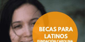 Becas para maestría en lexicografía, Fundación Carolina