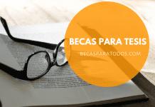 Becas Isabel Fernández, tesis doctorales en medicina de familia