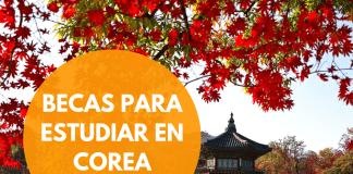 Becas Globales de Corea, posgrado e investigación para argentinos