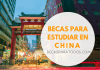 Becas a China, para estudiar chino, Instituto Confucio
