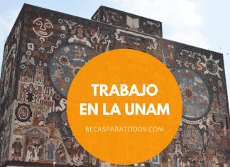 Trabajo en la UNAM, plazas para investigadores