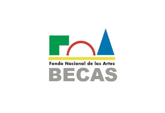 Becas a la creación para artistas argentinos, FNA.