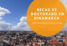Becas de Doctorado en innovación en Dinamarca