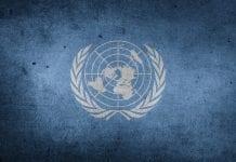 Pasantía en la ONU México, Proyectos de Pubertad
