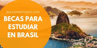 Becas para estudiar doctorado en Brasil, UNESP