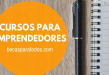 Becas Fulbright Chile, programa SUSI para emprendedores sociales