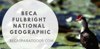 Beca Fulbright National Geographic, storytelling