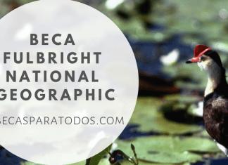 Beca Fulbright National Geographic, storytelling