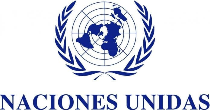 Trabajo en ONU México, noviembre