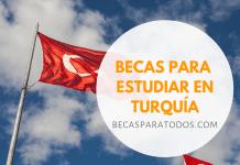 Becas universitarias del Gobierno de Turquía, pregrado y posgrado