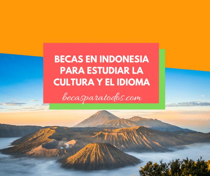 Becas en Indonesia, Darmasiswa, de cultura e idioma