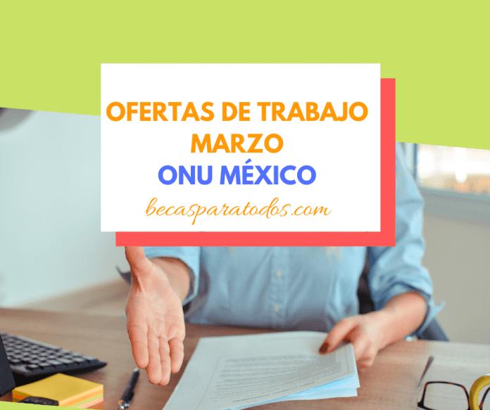 Trabajo en ONU México, vacantes de Marzo