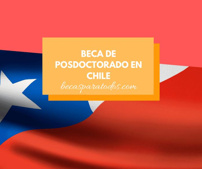 Beca para hacer un posdoctorado en Chile, neurociencias
