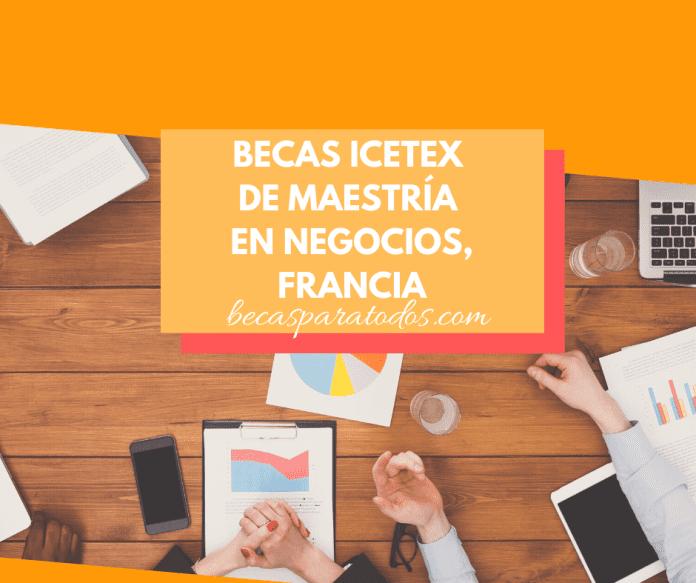 Becas ICETEX para maestría en Francia, Company