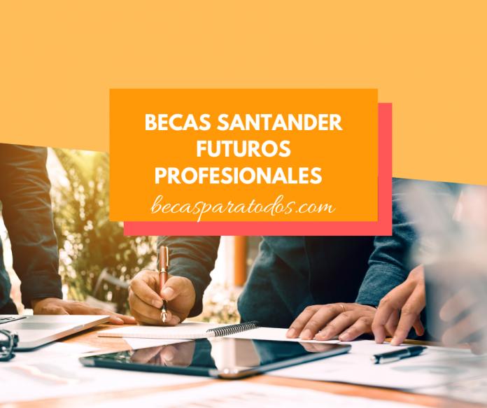 Pasantías para argentinos, Futuros Profesionales