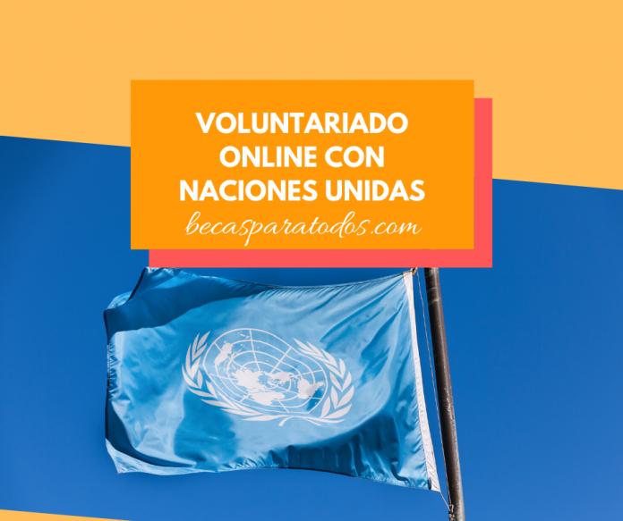Voluntariado ONU online, cómo ser voluntario de la ONU