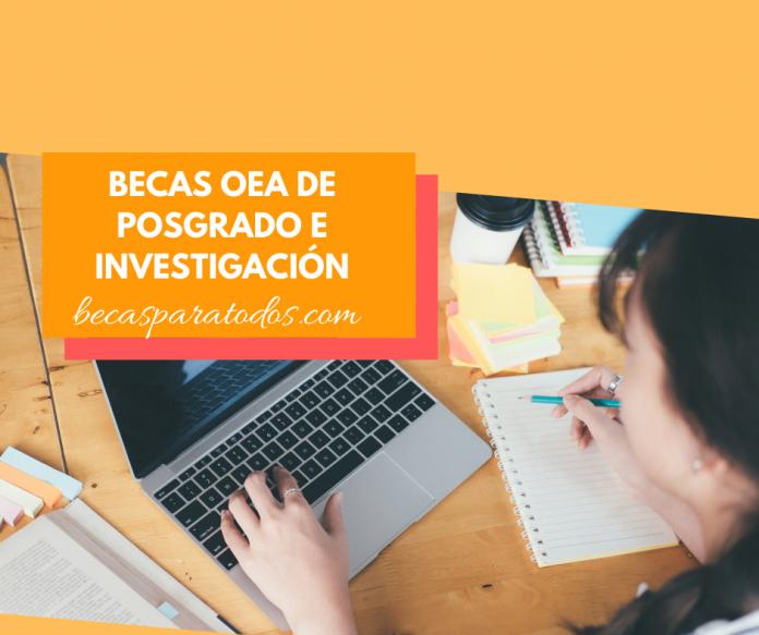 Becas OEA para estudios e investigación de postgrado