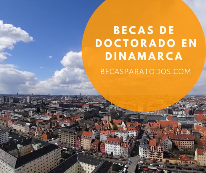 Becas de Doctorado en Dinamarca, varias áreas