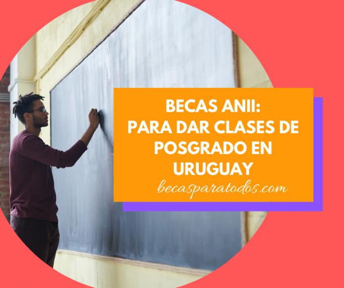 Becas ANII para profesores, para dar clases en Uruguay