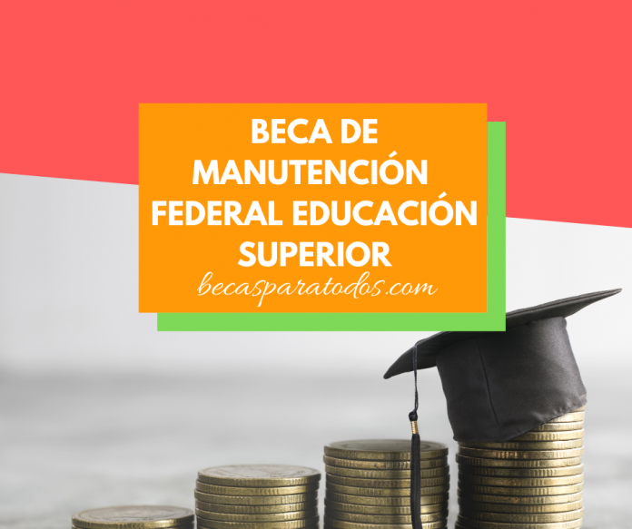 Becas 2020 de Manutención Federal, Educación Superior