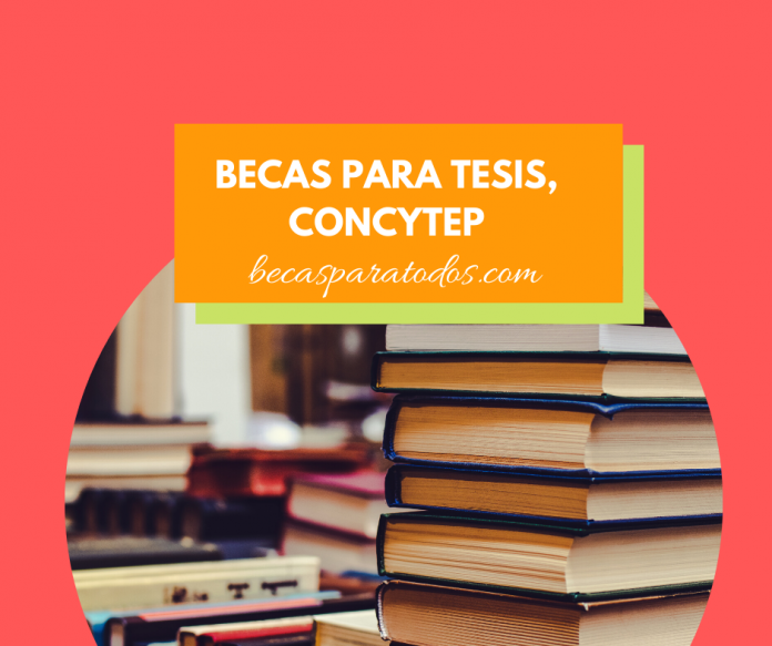 Becas para tesis, CONCYTEP