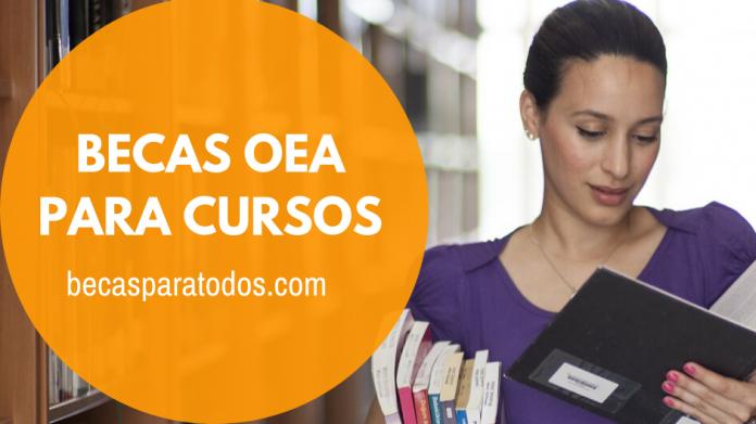 Becas OEA para cursos en línea sobre gestión