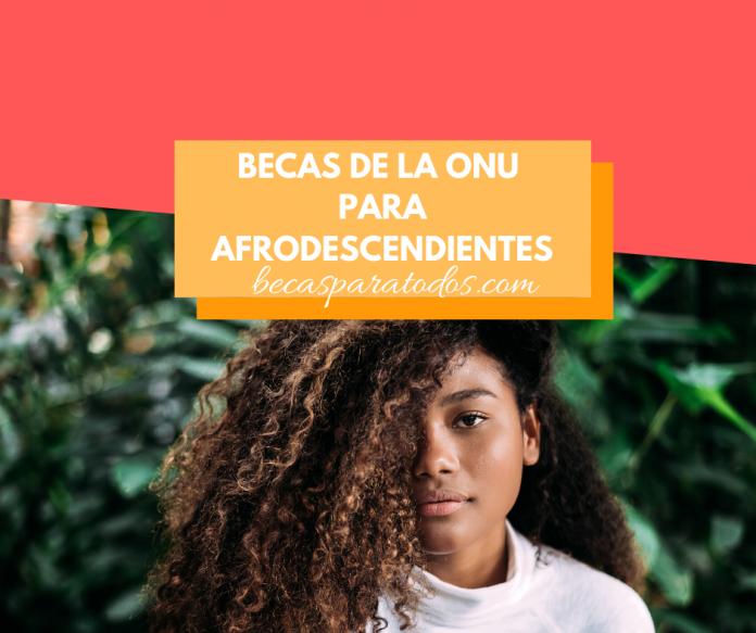 Becas de la ONU para afrodescendientes, formación en línea
