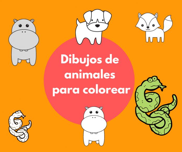 Dibujos de animales para colorear. Imprimir y descargar