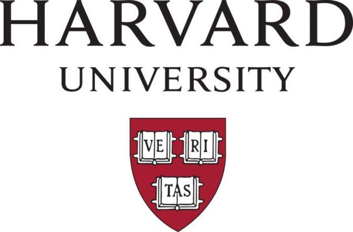 Becas de residencia en Harvard, derecho, arte, ciencias