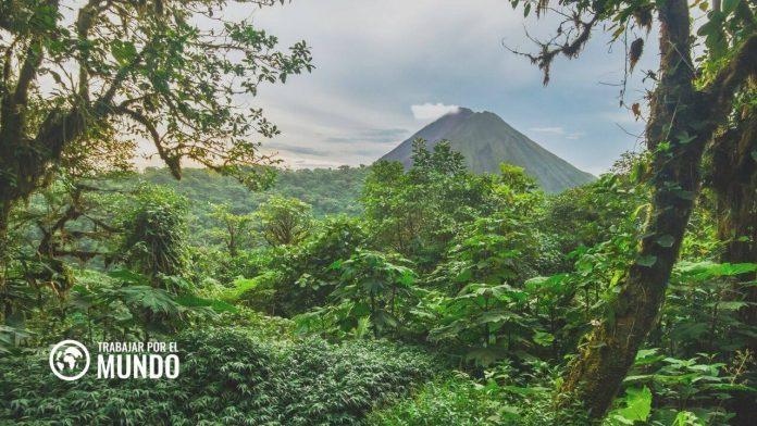 Cómo acceder a las campañas de contratación masivas de Amazon en Costa Rica