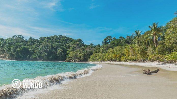 8 empresas que más contratan en Costa Rica